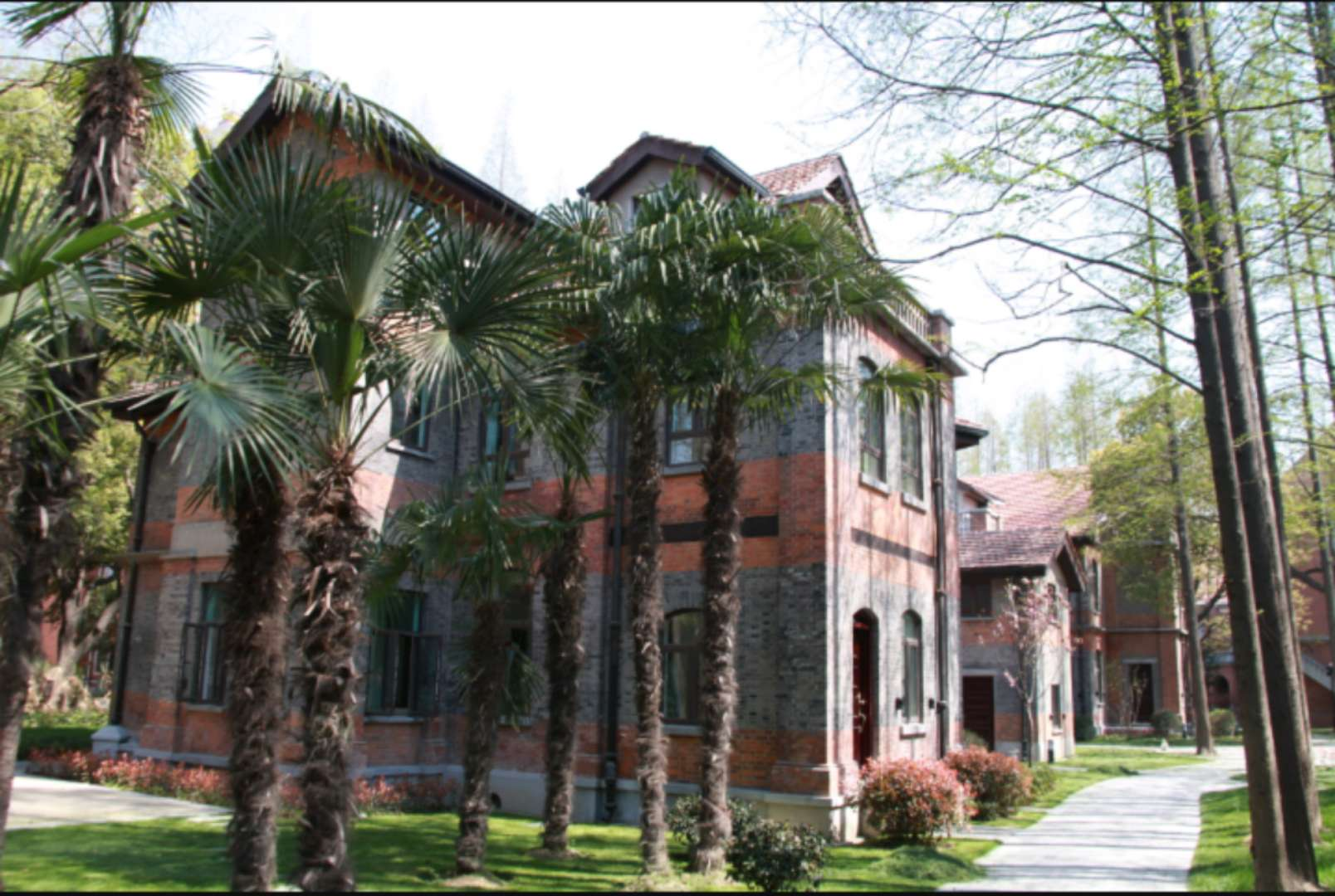 University-of-Shanghai-For-Science-And-echnology-road
