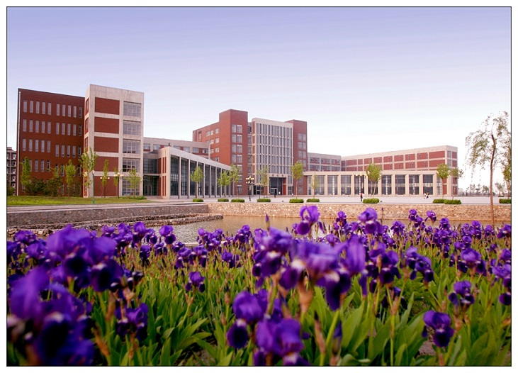 Flower-cluster-of-Tianjin-University-of-science-and-technology