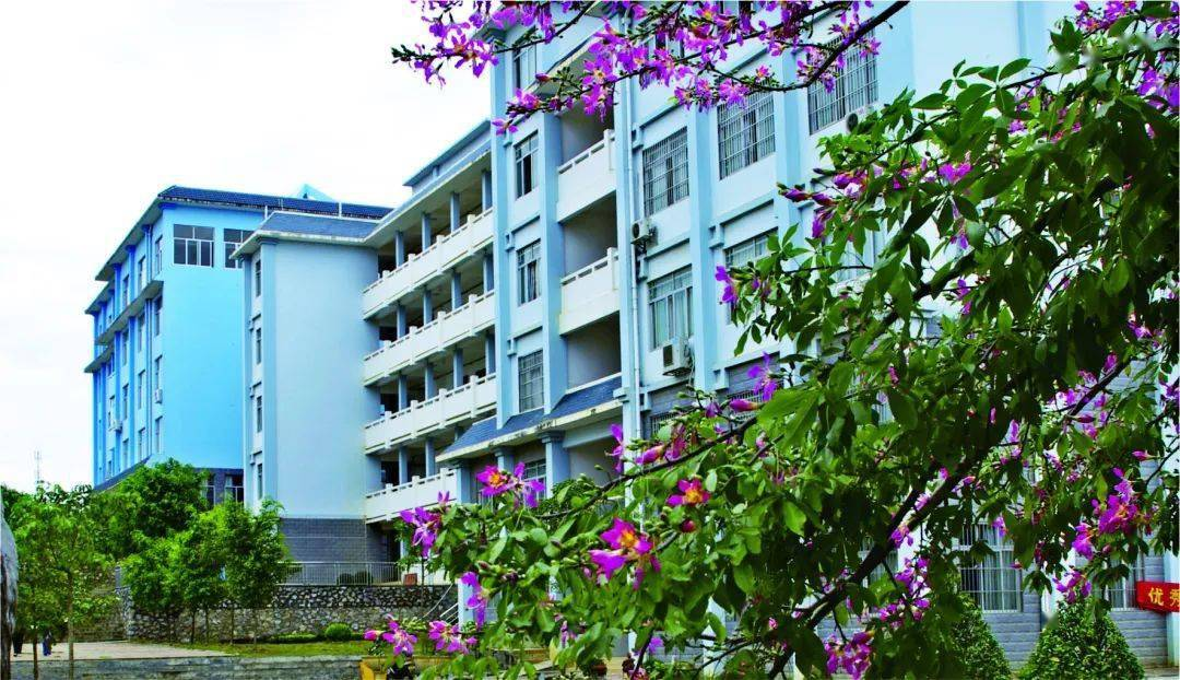 Campus-view-of-Guangxi-Vocational-College-of-Economics