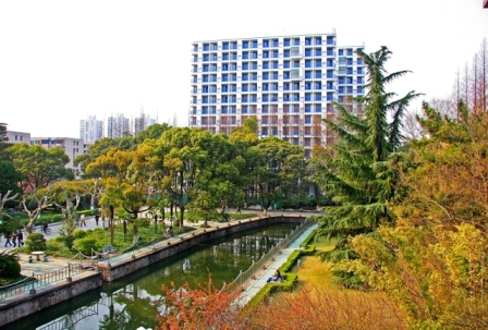 East-China-University-of-science-and-technology-trees
