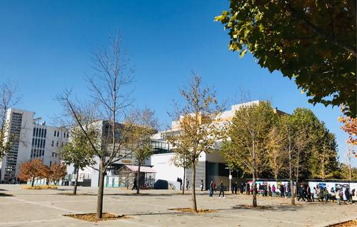 Autumn-scenery-of-Central-University-of-Finance-and-Economics